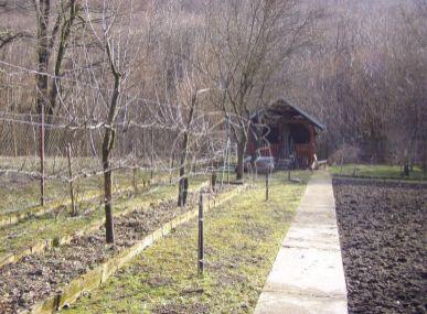 Záhrada v krásnom prostredí obce Kuchyňa