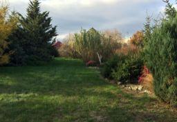 Pekný pozemok s udržiavanou záhradou v obci TUREŇ so starým richtárskym domom.
