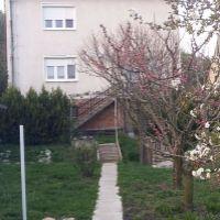 Rodinný dom, Kamenica nad Hronom, 240 m²