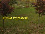 Pre našich klientov hľadáme pozemky v Pezinku a okolí. Ponúknite!