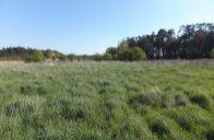 Pozemok určený pre rodinné domy, vhodný tiež na rodinnú usadlosť či farmu