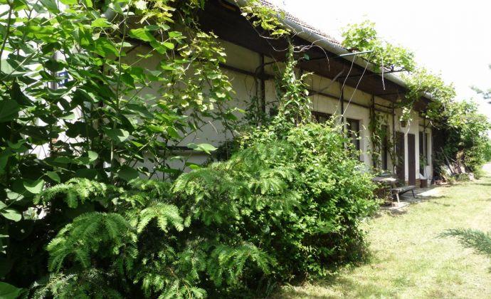 Best Real - Starší rodinný dom na predaj  s veľkým pozemkom v obci Oľdza