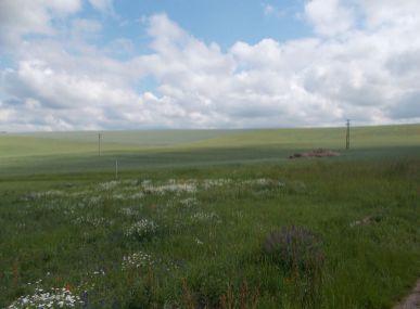 Pozemky na výstavbu RD v Janíkovciach