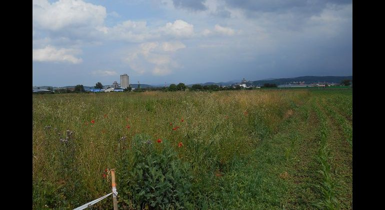 Rovinatý pozemok Záblatie, 2173 m2, 111.900,- Eur