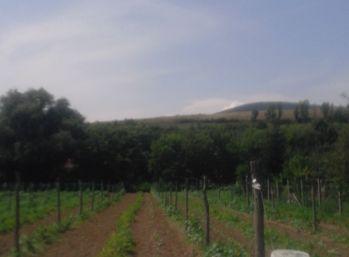 Predáme stavebný pozemok - Maďarsko - Erdőhorváti