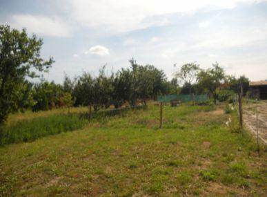 MAXFIN REAL - predaj pozemku v Topoľnici