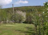 Na predaj pozemok 1077 m2 v Nitre, časť Zobor