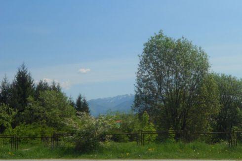 Pozemok na Rosinskej ceste