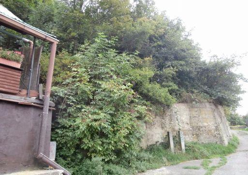 RK 3000 predá stavebný pozemok so záhradou, Banská Štiavnica.