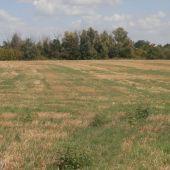 Výborný pozemok na skvelú investíciu, Poľný Kesov