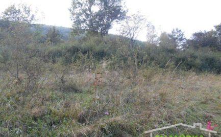 Pozemok 993 m2 v chatovej oblasti Chocholná-Velčice
