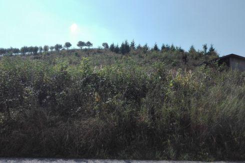 Parcela na výstavbu RD Žilinská Lehota