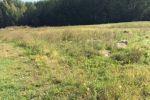 Pozemok na výstavbu rodinných domov v obci VIESKA, 8 km od Dunajskej Stredy, v rozlohe 4500 m2. Cena 59 000 €