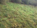 Pozemok v Lazoch pod Makytou, časť Tisové - Makytka. Len u nás - exkluzívne. 3,5€/m2.