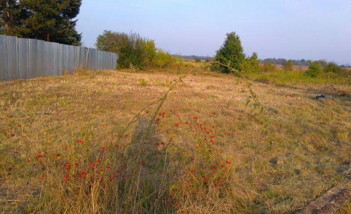 Predaj, pozemok 1252 m2, Záhorská Ves, Malacky