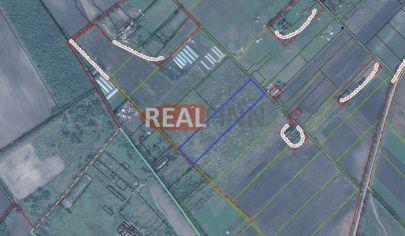 REALFINN Predaj - Veľký pozemok 1,3 Ha, poľnohospodárska usadlosť pri Nových Zámkoch