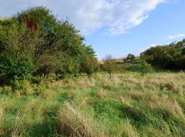 Rekreačný pozemok 1437 m2, Drietoma