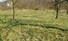 Stavebný pozemok 23á - Lorinčik