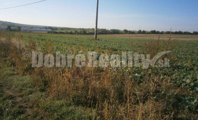 pozemok vhodný pre výstavbu rodinných domov o výmere 17,424 ha v obci Rumanová