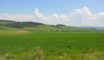 Poľnohospodárska usadlosť (32101m2), Harichovce