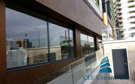 Retail premise for rent, 400 sqm, Mileticova street
