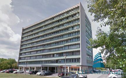 Prenájom kancelárskych priestorov, Drieňova ulica
