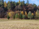 Ponúkame na predaj pozemok vhodný na poľnohospodárske účely