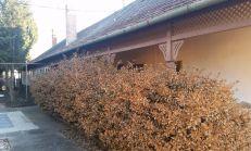 Rodinný dom  Želiezovce 1