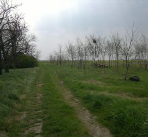 STARBROKERS - Skvelá investícia! Pozemok v Miloslavove s možnosťou výstavby RD
