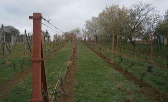EXKLUZIVNE !!!.  záhrada o výmere 7,11 ára v meste Levice