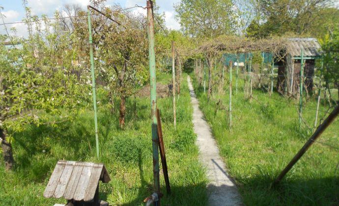 Ponúkame na predaj záhradu v Nových Zámkoch.