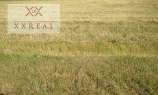 Predáme stavebný pozemok 650m2 v Šamoríne časť Královianky. Cena 85,-Eur/m2.