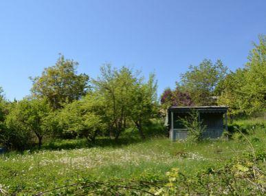 MAXFIN REAL - na predaj záhrada