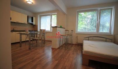 Veľmi pekný, kompletne zariadený,1 izbový byt, prenájom, Komenského, Košice-Sever, Komenského
