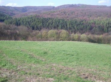 Rekreačný pozemok 2350 m2, Dolná Súča
