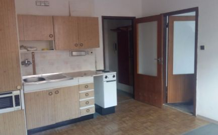 Slnečný 1 izbový byt v pôvodnom stave v Holíči