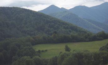 Predám lukratívny pozemok na výstavbu rekreačných chát v obci Lysica.o výmere 6738 m2.