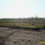 Pozemok v Zohore, 28km od Bratislavy, 234 m²