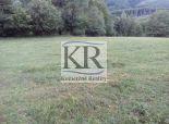 11 200 m2 Pozemok  - lúka (trvalý trávny porast ) na PREDAJ