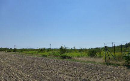 Investičná príležitosť. Budúci stavebný pozemok v extraviláne obce Čunovo.