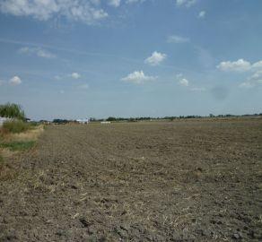 Exkluzívny predaj stavebného pozemku v Tomášove na výstavbu RD
